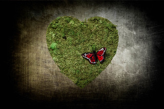 Mariposa Heart | by Nate_Martin