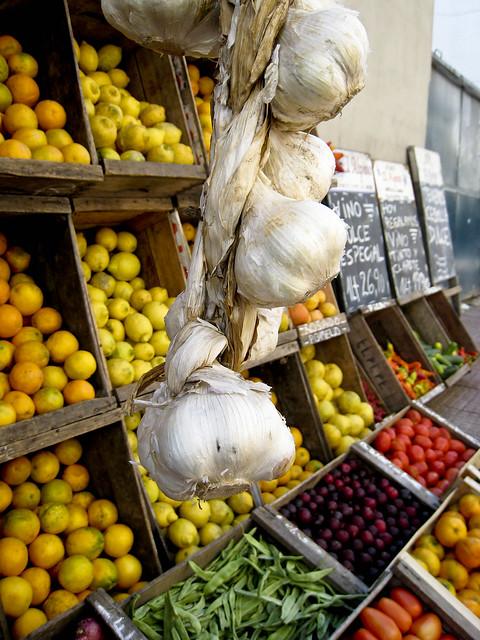 Garlic in Uruguay