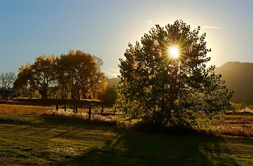autumn trees sunset sun fall gardens creek landscape solar bravo colorado fort fortcollins cottonwood co sunburst omg collins horsetooth 2007 blueribbonwinner splendiferous supershot flickrsbest clff nothdr naturespring goldenphotographer