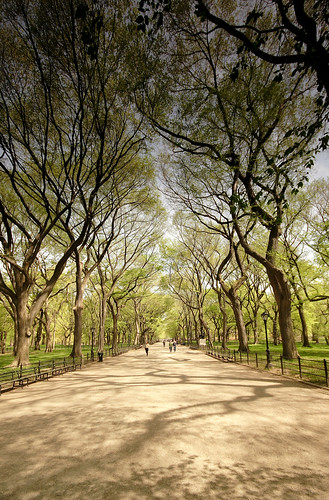 Central Park, New York - the Mall | by J_a_m_e_s