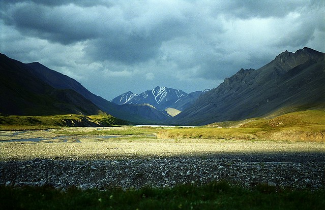 Alaska,ANWR,Canning river,d