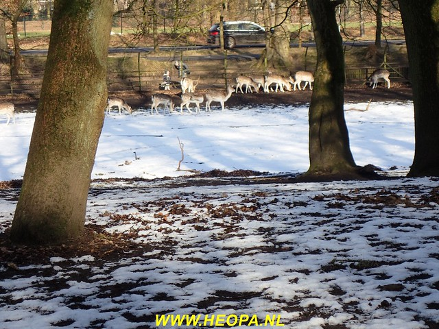2017-02-15      Austerlitz 25 Km (53)