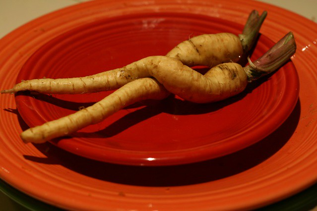 Parsnip Passion III: AfterGlow