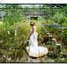 Zahra - greenhouse/farm house