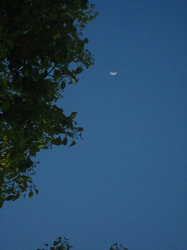 california family sunset sky moon lopez porterville katielopez