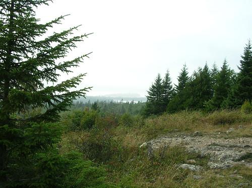 travel nature rural geotagged coast view top exploring hill maine pines naturewalk steuben downeast pigeonhill petitmanan geo:lat=44454614 geo:lon=67881346