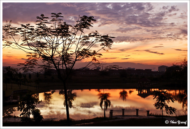#127/08  Delightful Sunrise