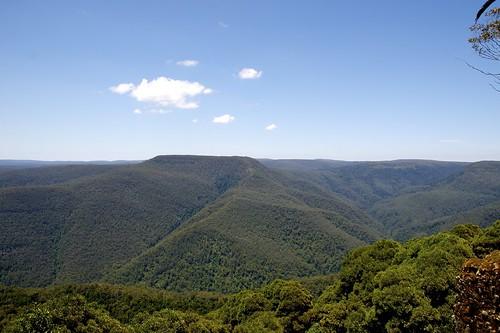 park forest nationalpark newengland australia hills gloucester nsw newsouthwales np aus barringtontops barrington oceania auspctagged 45kmwofgloucester newenglandnorthwest pc2422