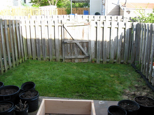 My Tiny Backyard | This Is My Tiny Backyard. The Lawn Is Abo ...