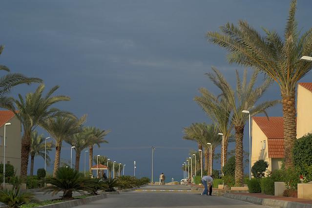 Damoon-e Kish, in Kish Island, Persian Gulf, Iran (Persia) مجتمع دامون ساحلی در جزیره کیش، خلیج فارس