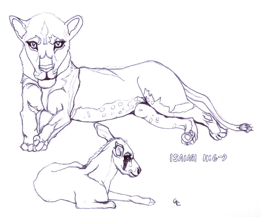 lioness coloring pages - photo#35