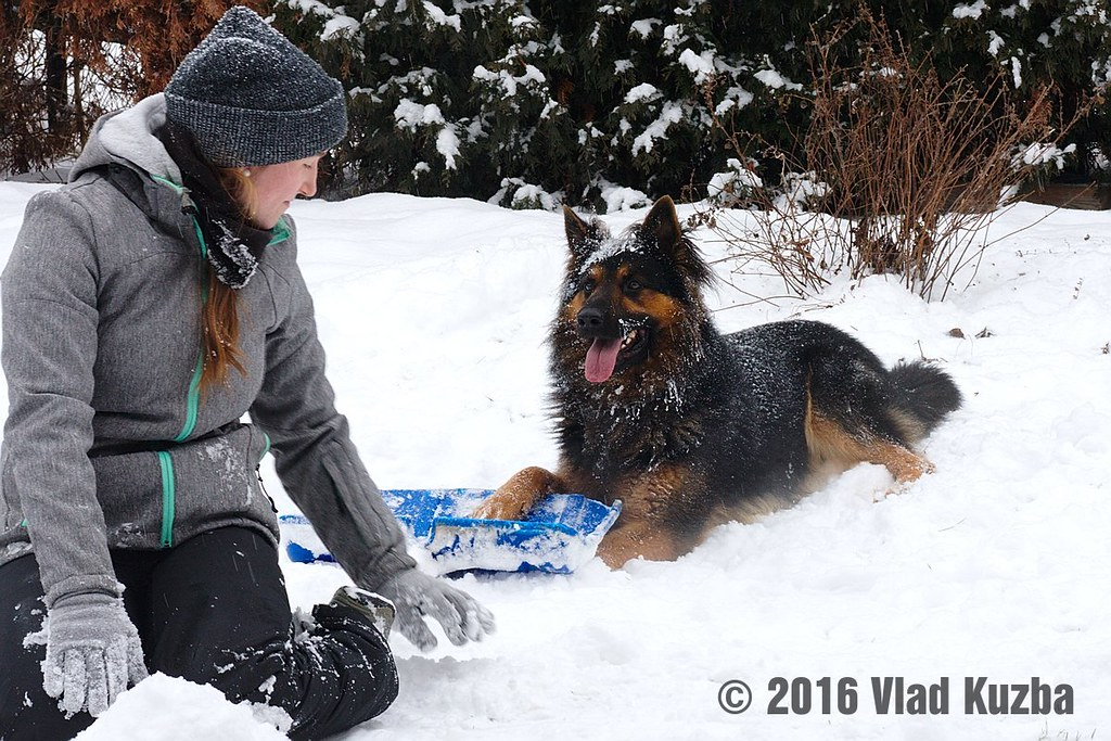 Boje ve sněhu
