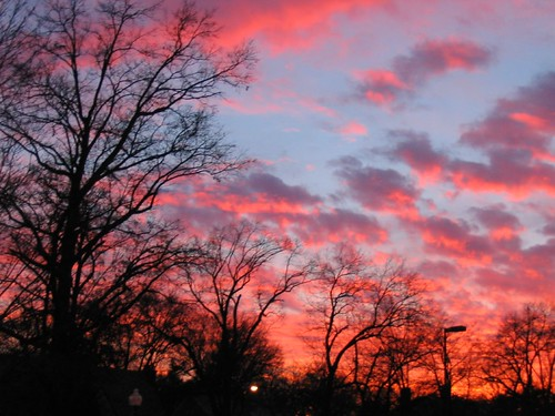 sunset sky commute washu wustl