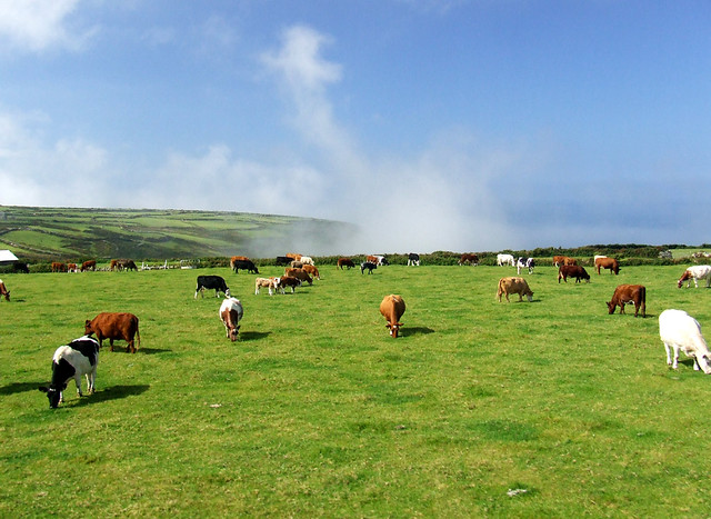 Low Cloud on North Penwith Coast