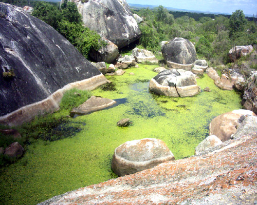 Jardim de Angicos Rio Grande do Norte fonte: live.staticflickr.com