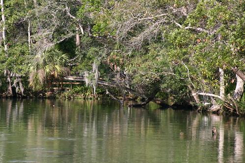 statepark park florida