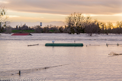 california norcal yubacounty river featherriver levee flood watertower yubacity tank propane sunset