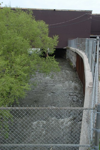 ontario canada rivers newmarket hollandriver yorkregion
