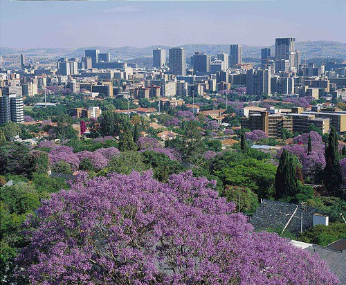Jacaranda City, Tshwane, Pretoria, South Africa