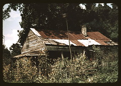 An old house almost hidden by sunflowers, Rodney, Miss.  (LOC) | by The Library of Congress