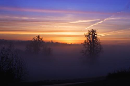 morning mist sunrise photography thegrove spirit soe abigfave impressedbeauty betterthangood