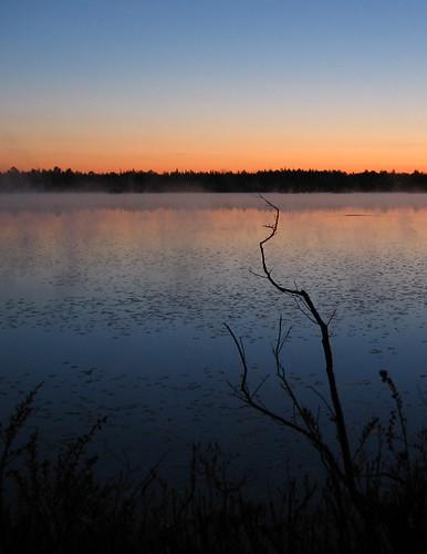 mist reflection sunrise dawn newjersey nj bog pinebarrens pembertontownship burlingtoncounty whitesbog anawesomeshot 24hoursofflickr burlingtoncountybirdquest brendantbyrnestateforest