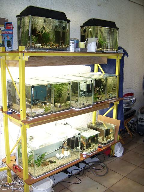Diy Fish Tank Stand 21 Bottom Lighting Hood Installed An