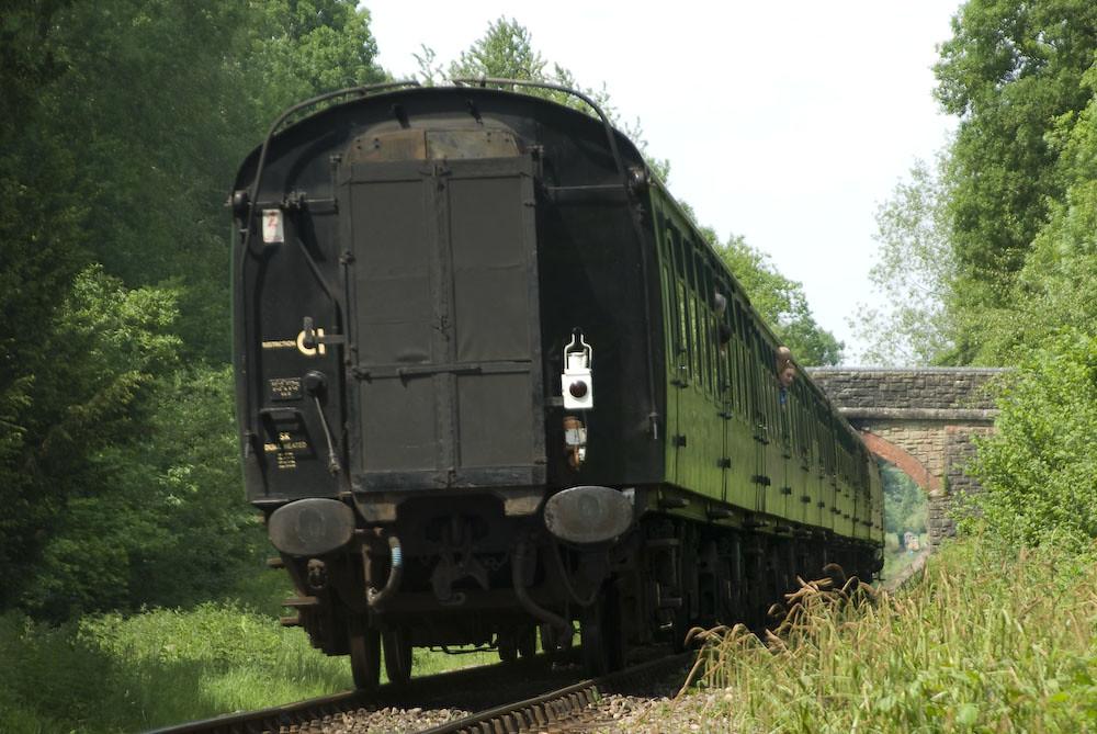IMGP8552