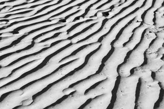Dune Pattern | by Chemophilic