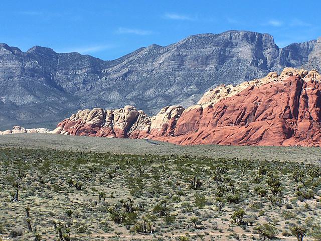 Red Rocks 9.jpg