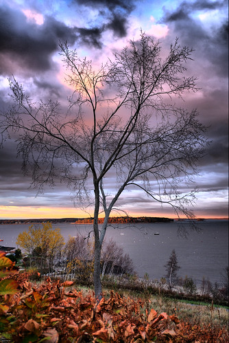 ocean autumn trees sunset sky color tree fall nature water colors leaves night clouds forest sunrise season portland landscape nikon maine d200 soe cascobay 25faves mywinners treesubject 1224nikkor wtmwchallengewinner theperfectphotographer