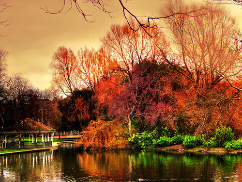 travel trees ireland light dublin reflection nature colors landscape bravo olympus scene hdr irlanda autunm photomatix magicdonkey 25faves atrium09 ststephensgreenpark mywinners artlibre infinestyle theunforgettablepictures rubenseabra