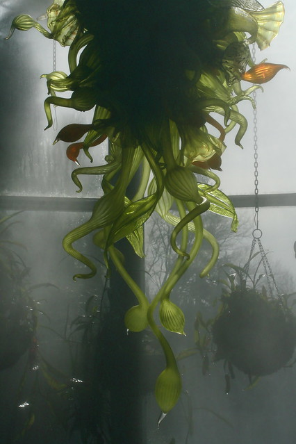 Chihuly in the Mist