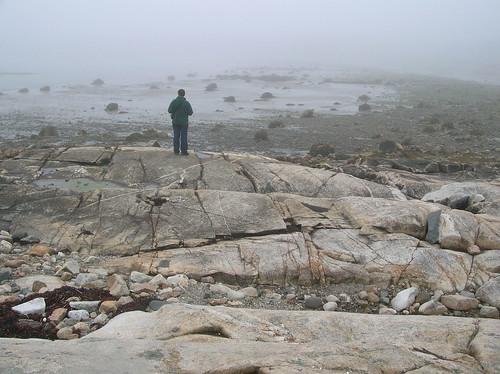 travel seaweed nature fog rural geotagged coast rocks exploring gray maine trail end naturewalk steuben lumps fogy downeast petitmanan geo:lat=44421214 geo:lon=67891989