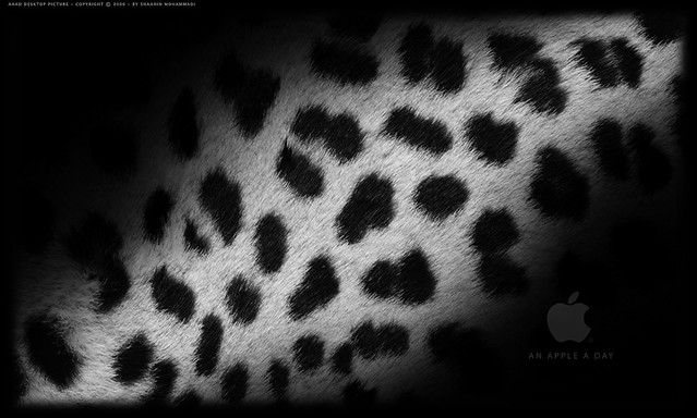 Apple Mac Osx Leopard Wallpaper 5 Hari Haran Flickr