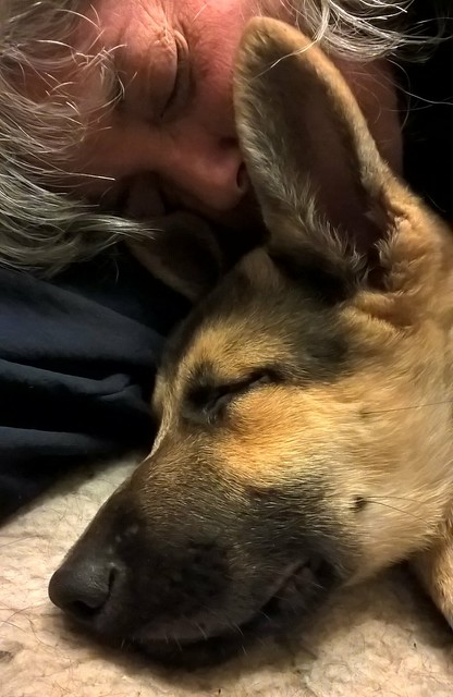 Hampton Shares a Nap