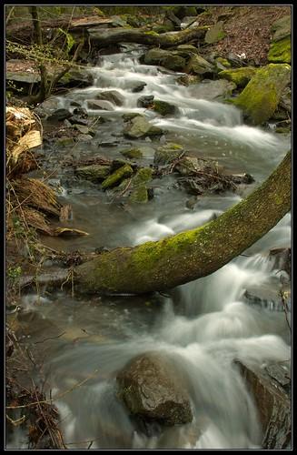 The River in Woogtal, Königstein   by paulwb