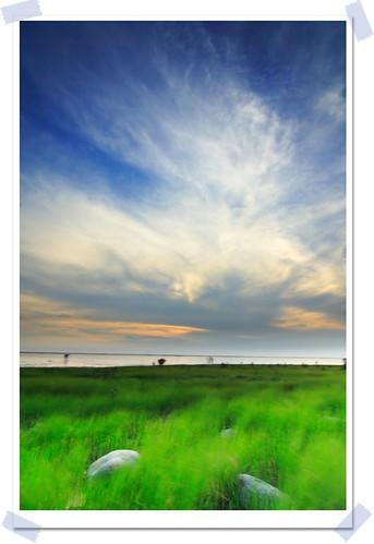 sunset sun sunshine canon eos 350d taiwan tokina 夕陽 台灣 canoneos350d 1224mm canoneoskissdigitaln 風景 wetland 濕地 香山 tokina1224mmf4 香山濕地 img7421 platinumphoto