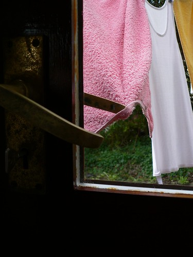 The washing on the line tries to open the back door | by florriebassingbourn