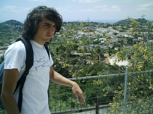 Ischia landscape