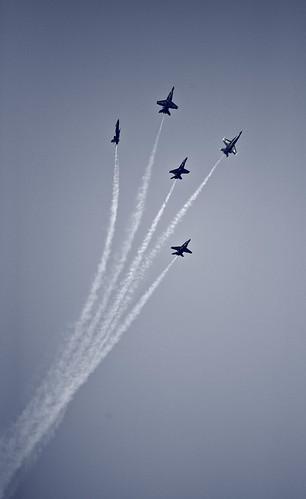 blue florida jets angels jacksonville flyers usnavy stunt anawesomeshot aplusphoto scenicsnotjustlandscapes airseaspectacular
