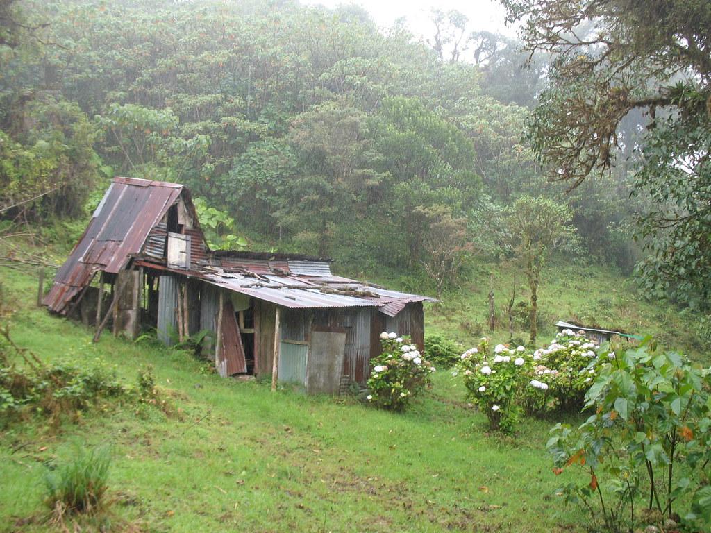 Abandoned Shelter