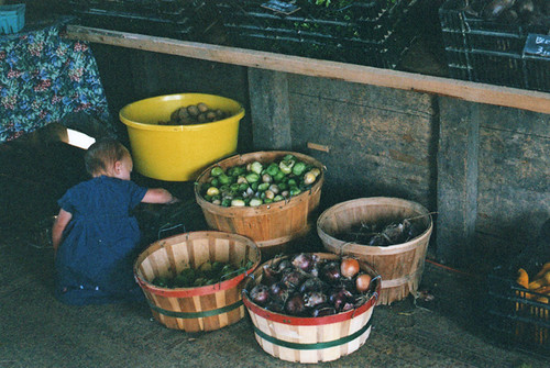 film : at the farm | by SouleMama
