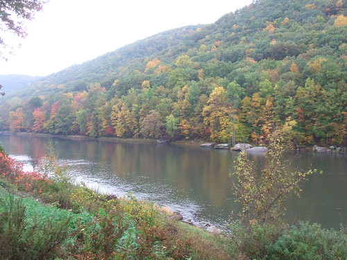 alleghenyriver autumncolours fallcolors pa upstatenyandpa reflections geordiemac tidioute ©2007georgemcvitieallrightsreserved water watercourse river trees hill usa