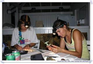 20041018_Guana@BVI_Bat  Netting_005_A | by rosstsai