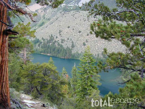 Walker Lake | by totalescape.com