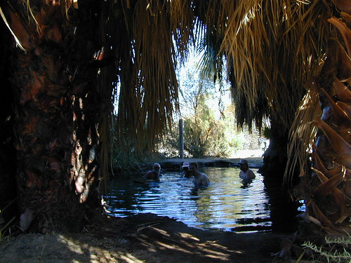 5 Palms Hot Springs