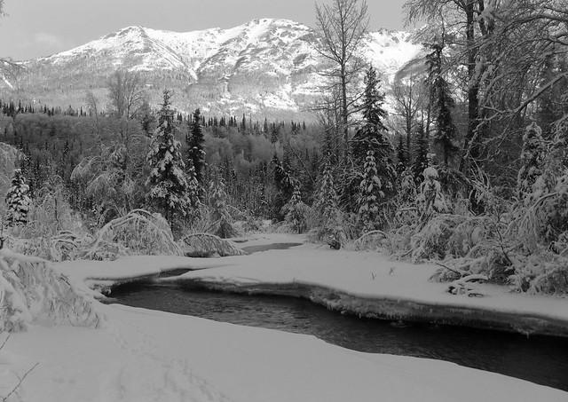 Alaska landscape in black & white