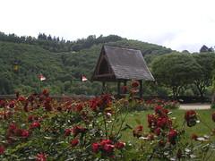 Cochem Germany 0705 #42
