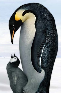 March of Penguins